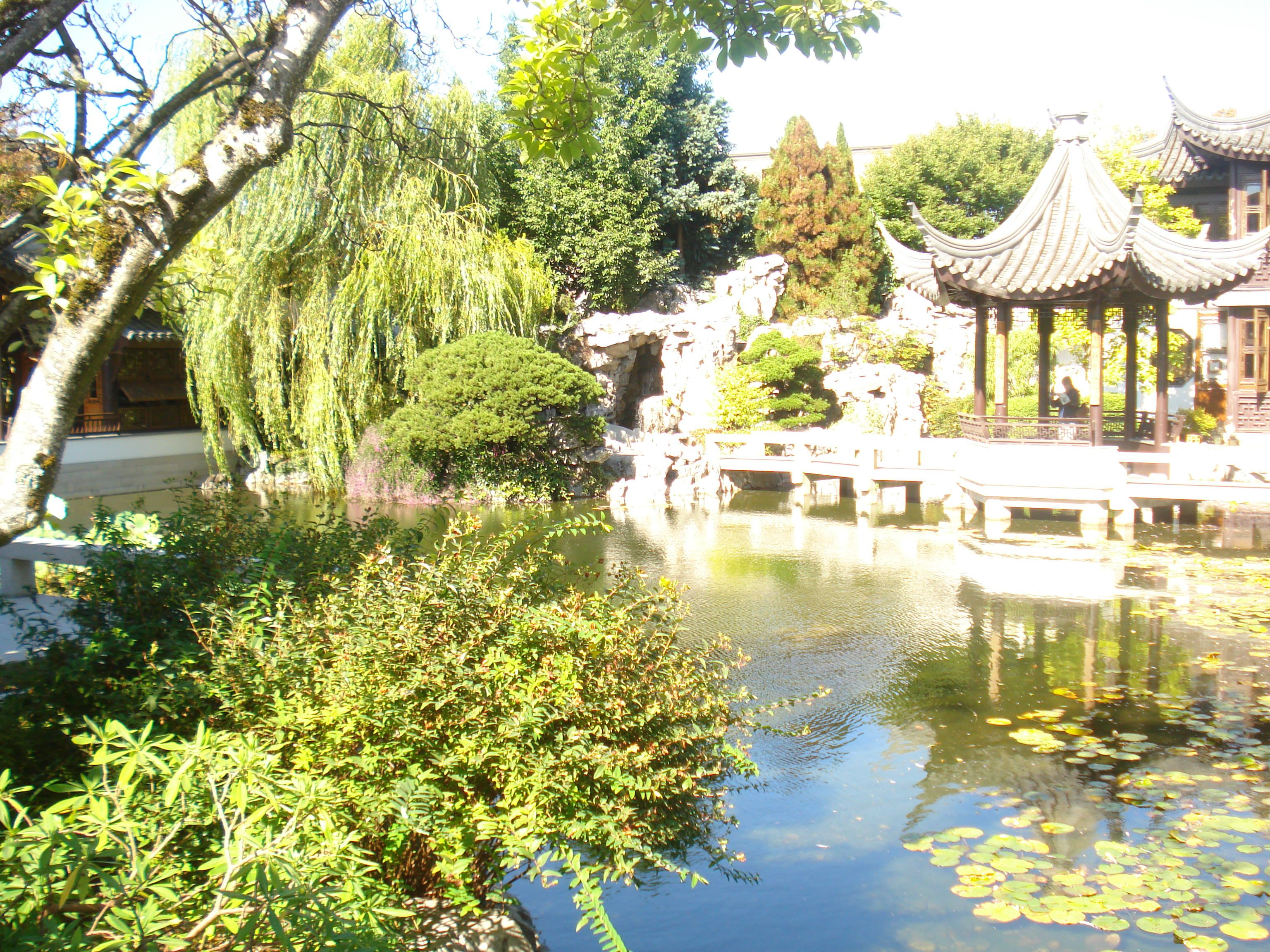 Chinese Garden Portland Oregon Fave Places To Go In Portland Pin