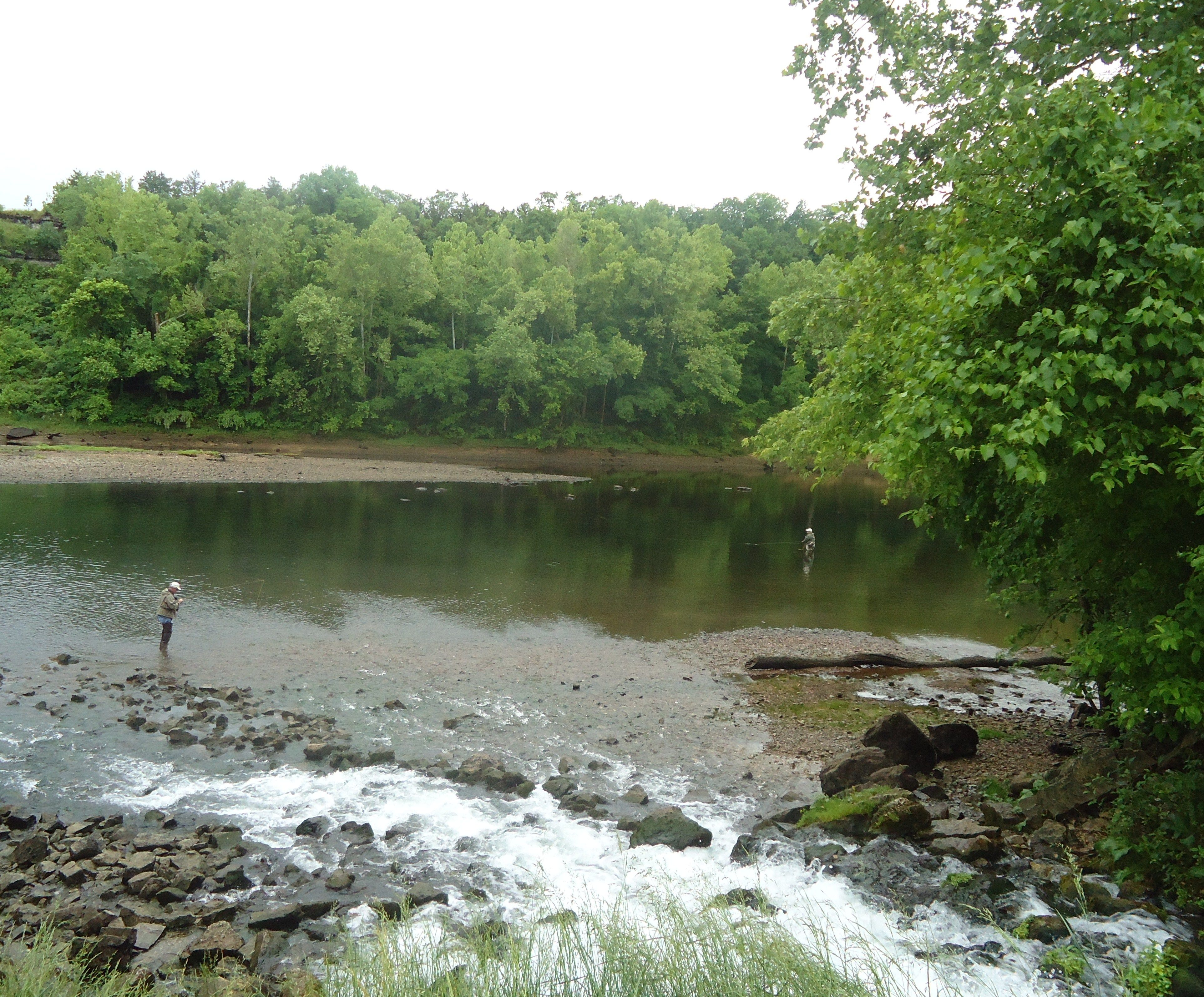 Fly fishing on lake taneycomo taney county it 39 s worth a for Lake taneycomo fishing