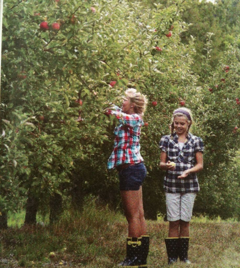 peach orchard buddhist single women One day i was with my dad, who worked in the orchards as a field hand  when i  saw a tree laden with peaches, i scurried over to it  some say the buddha was  deeply suspicious of women: since he taught against the.