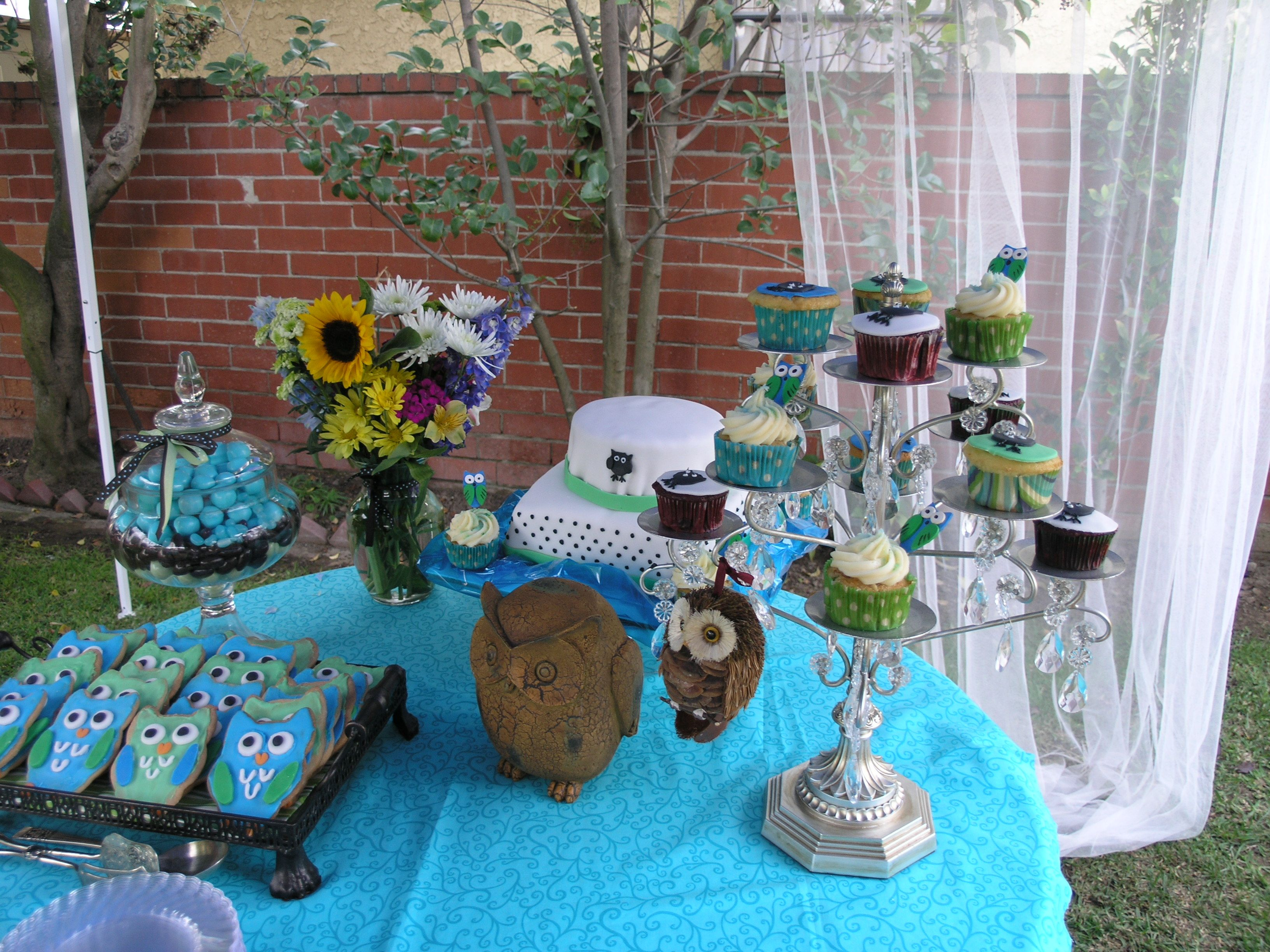 owl themed baby shower a servant 39 s heart pinterest
