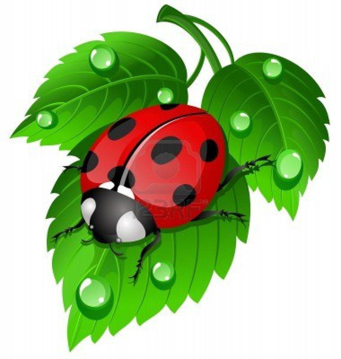 Cute ladybug!   Ladybugs   Pinterest
