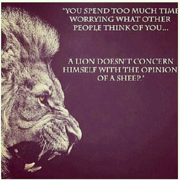 Lion Quotes And Sayings Lion Quotes And...
