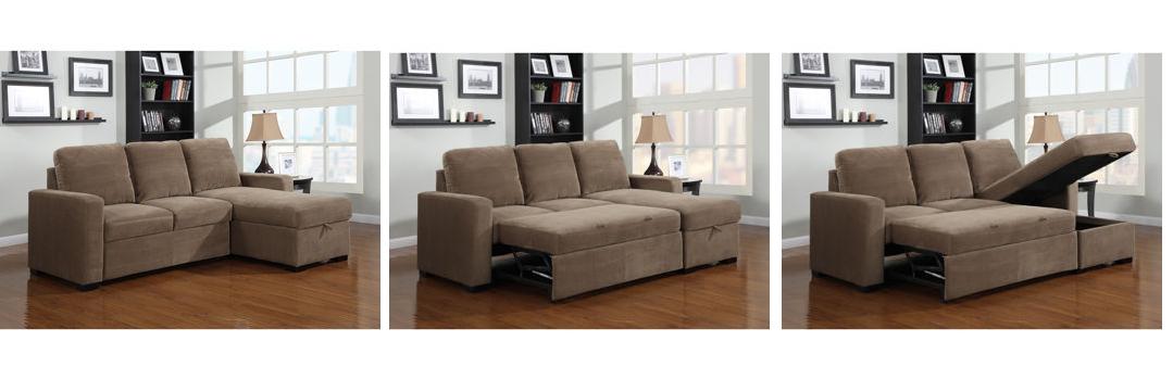 Costco Newton Chaise Sofa Bed
