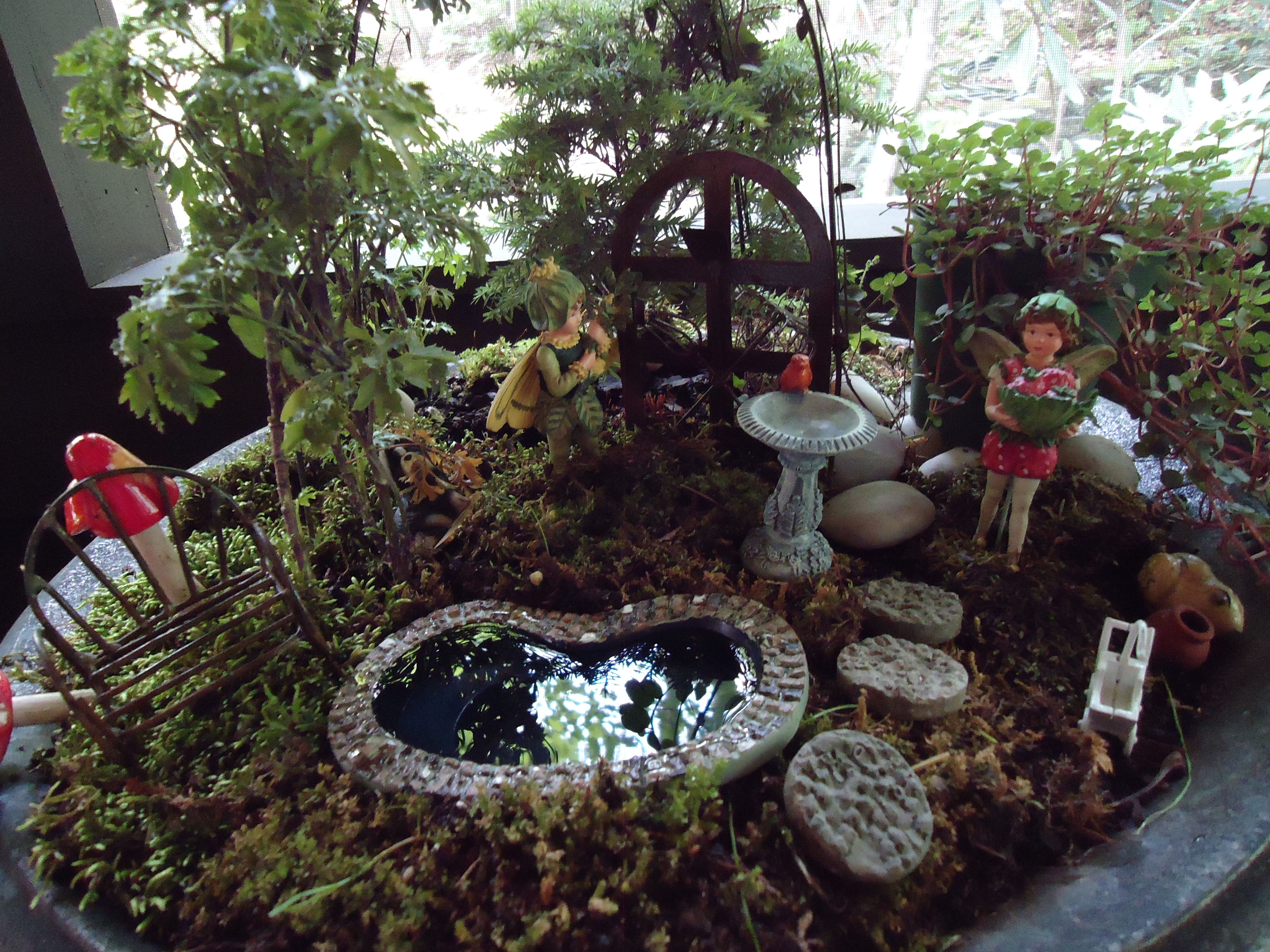 Fairy water garden ideas photograph fairy garden garden for Garden pond ideas pinterest