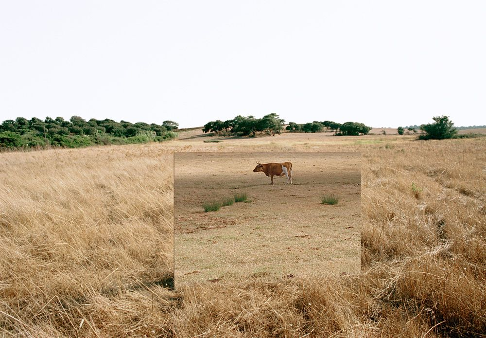 Andrea Galvani © 2003-2004, The wall of sound #5 C-print mounted on aluminum dibond, wood white frame, 145 x 95 cm // 57.1 x 37.4 inches Private collection, Madrid. Courtesy Artericambi, Verona, Italy