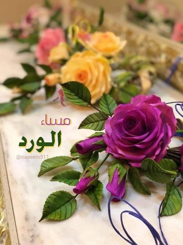 463 Best مساء الخير images   Good evening, <p></p><br>Evening greetings, <p></p><br>Good morning