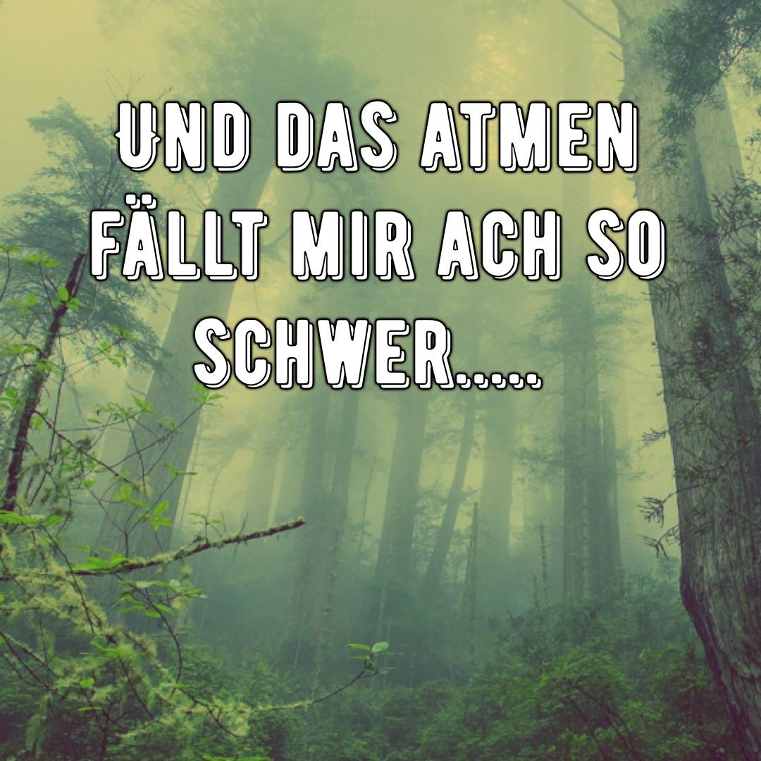 Ohne dich ~ Rammstein | Rammstein, Zitate, Sprüche