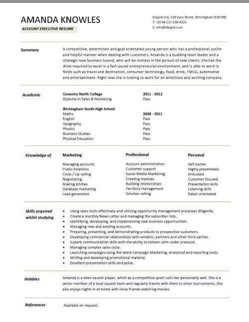 best executive resume format example telecom