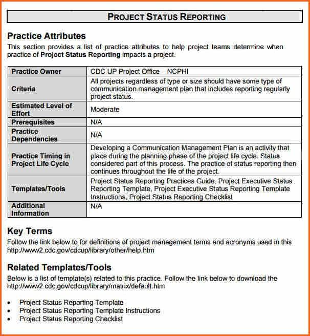 Project Management Status Report Example Intoanysearchco - Project management status report template