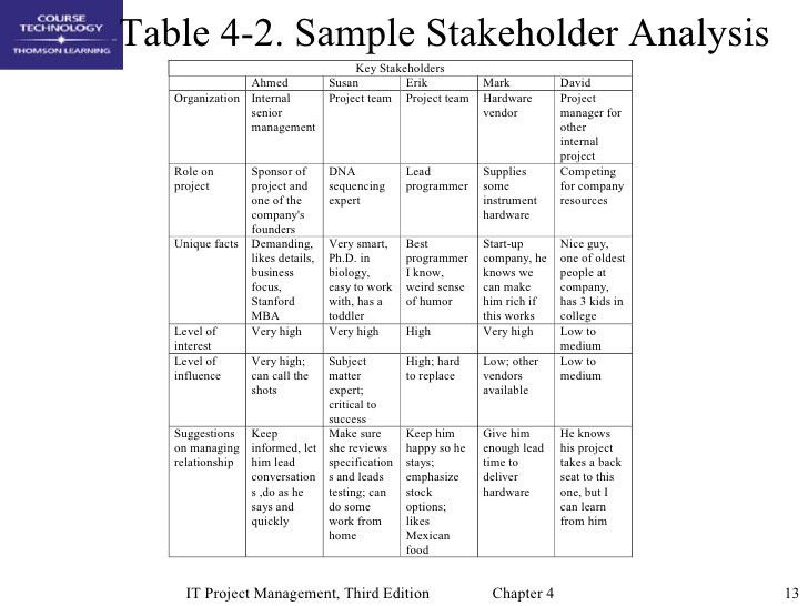 Project Stakeholder Analysis Template Example Of How To Conduct A - management analysis sample