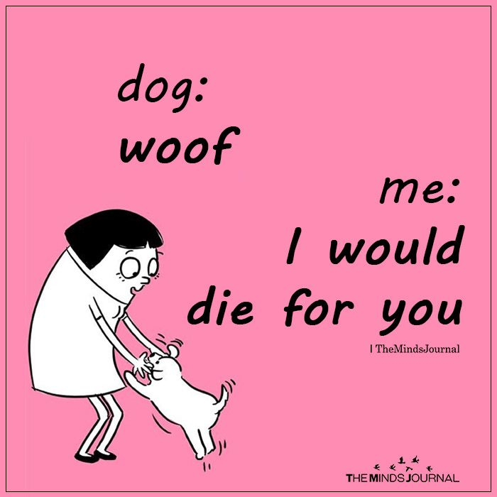 Dog: woof me: I would die for you