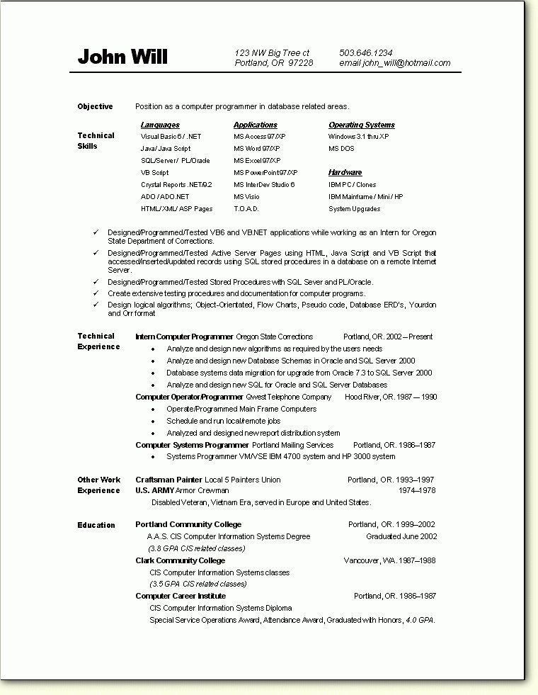 Programmer Resume Example  Examples Of Resumes