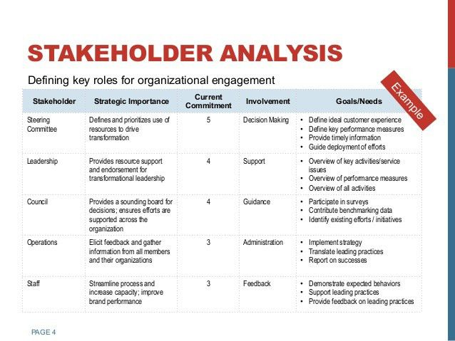 sample stakeholder analysis efficiencyexperts - sample needs analysis