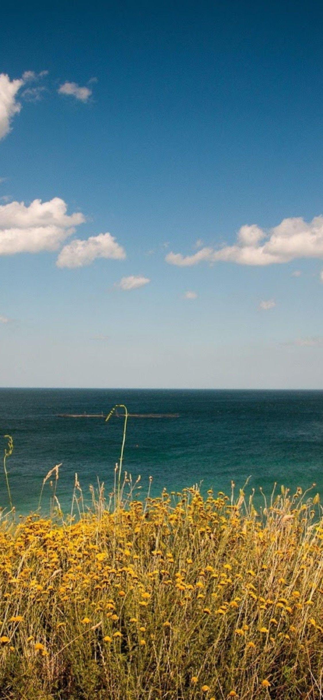 Ios 11 Iphone X Ocean Sky Coast Photography Nature