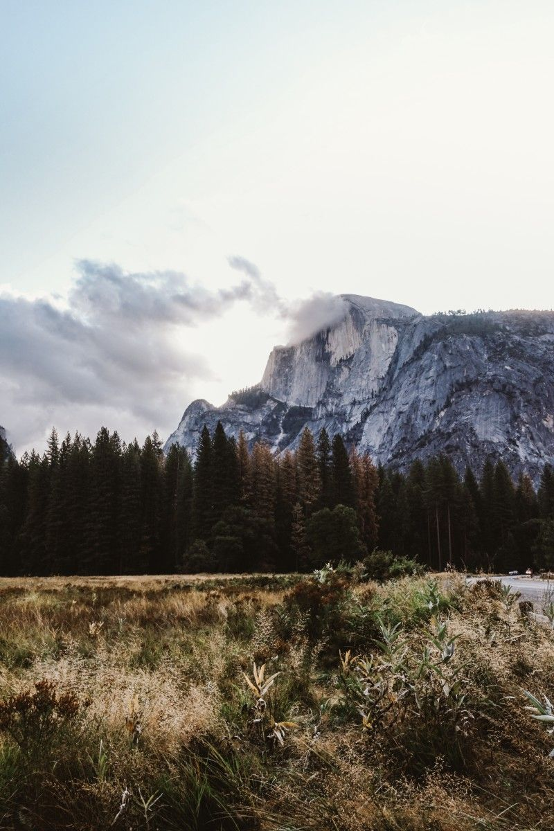 20 Photos to Inspire You to Visit Yosemite National Park - Bon Traveler