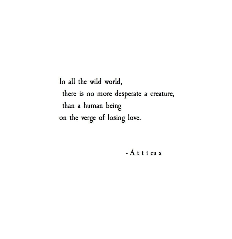 Pinterest Love Quotes: To Kill A Mockingbird, Kill A Mockingbird And The Words On