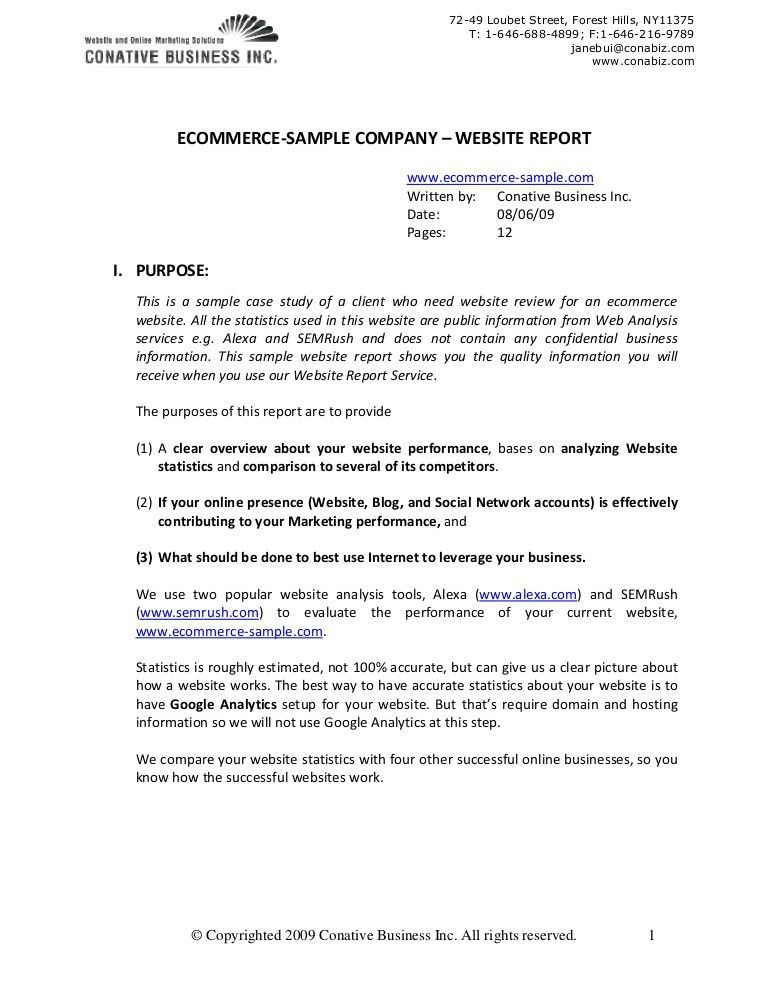 sample company report cvessayoneprofessional - sample company report