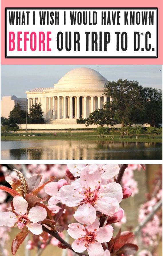 Washington DC Travel Tips - Things to Do in D.C. with Kids and Family!