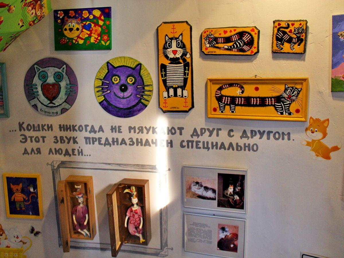 В стенах музея кошек «Мурариум» в Зеленоградске. Фото: Evgenia Shveda