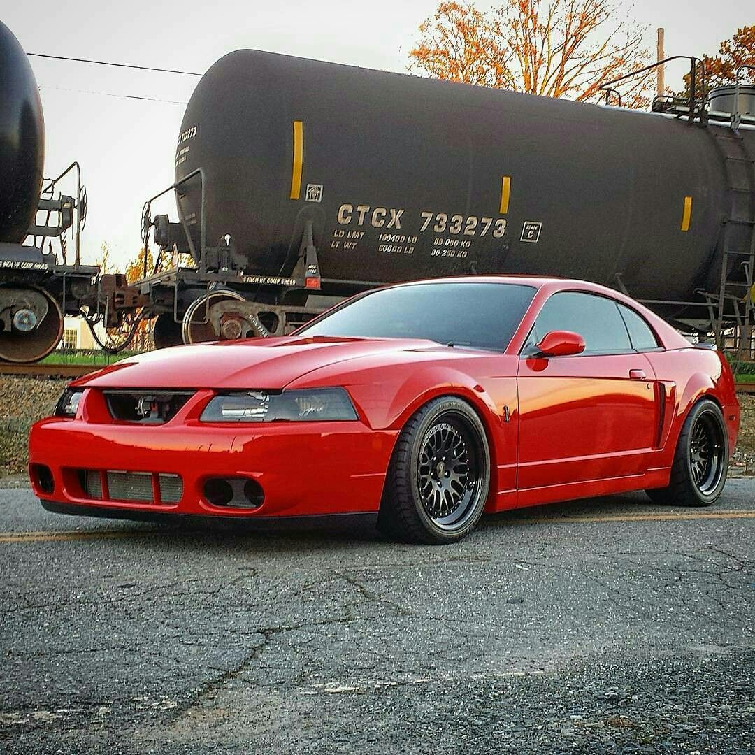 Is A Terminator Cobra A Good Investment