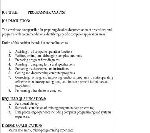 Senior Programmer Job Description  Sample Ideas