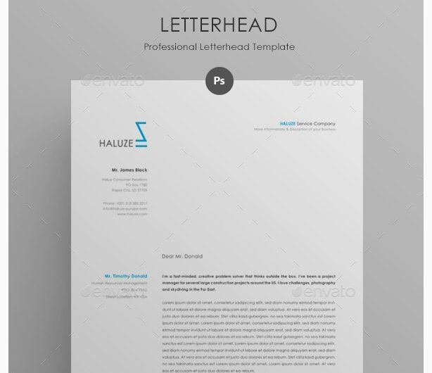 Company Letterhead Word Template Ms Word Business Letterhead - professional letterhead