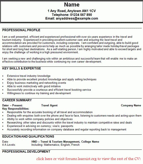 Travel Agent Resume Examples - Examples of Resumes