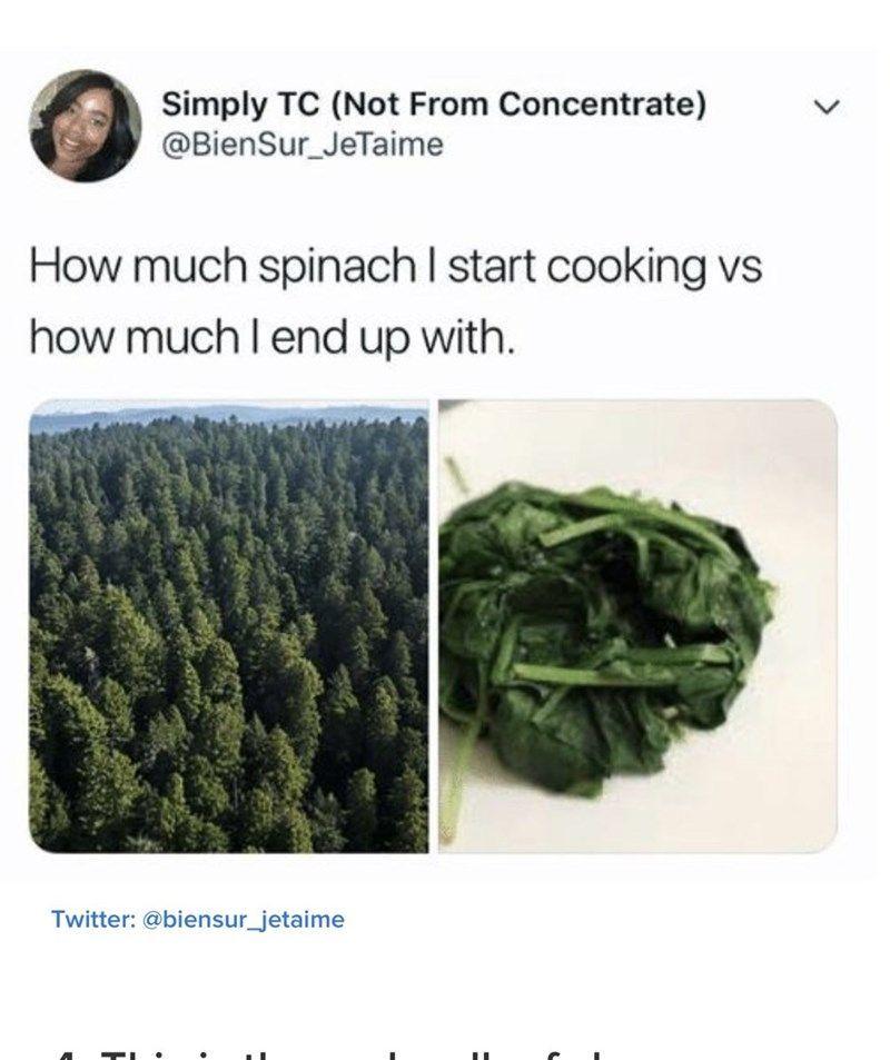 Calling all foodies! #Memes #FoodAndDrinks #Cooking