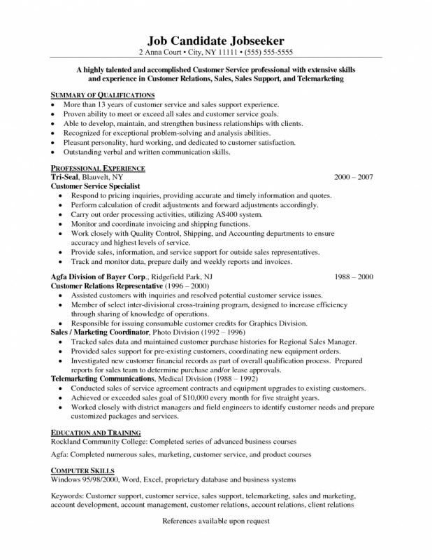 Resume Professional Summary Examples Customer Service - Examples of