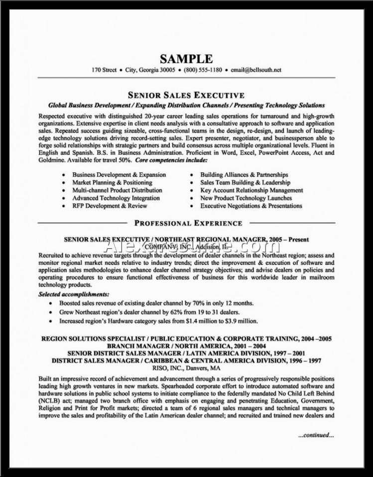 Resume Names Examples Good Example Of A Resume Sample Resume