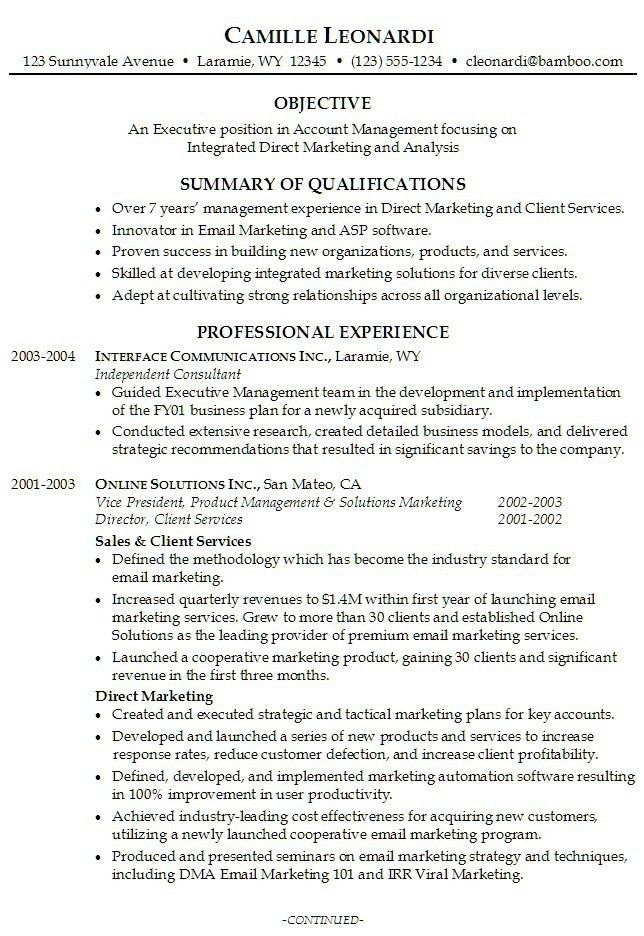 Example Of A Summary Sample Executive Summary For A Marketing
