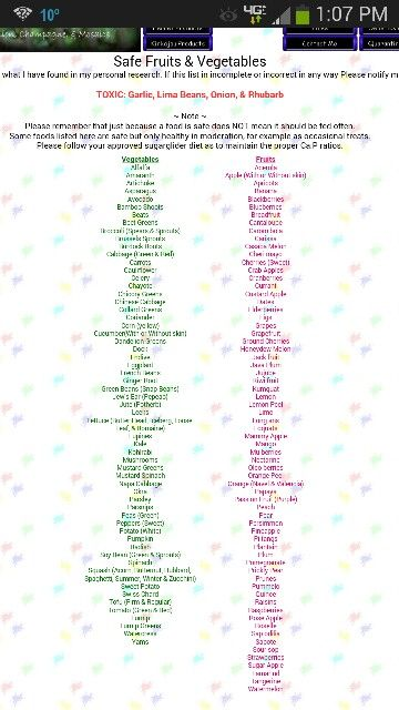 Sugar Glider Safe Food List
