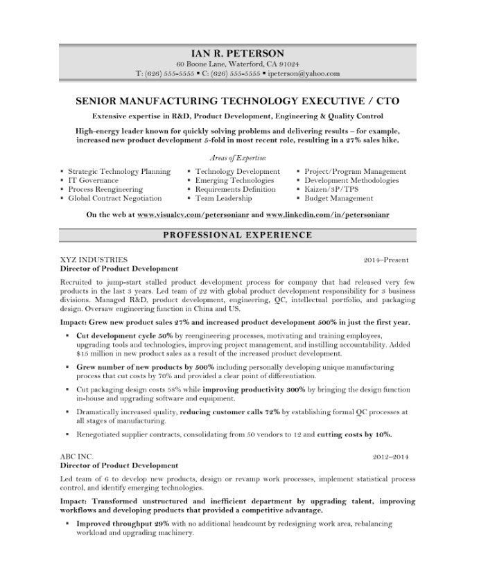 Cto Sample Resume Resume Sample Cto Resume Example Cio Sample