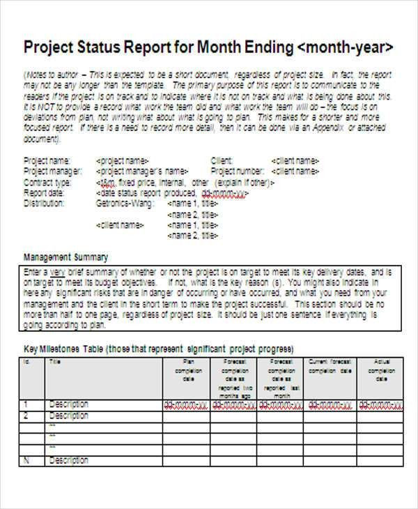 Monthly Project Report Template Project Status Report Template 8 - sample project report