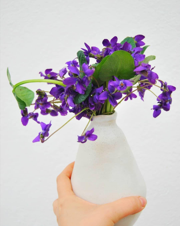 """165 gilla-markeringar, 18 kommentarer - Frolic! (@frolicblog) på Instagram: """"My Valentine's bouquet preference is fresh cut sweet violets. I usually buy them for myself. 😜…"""""""