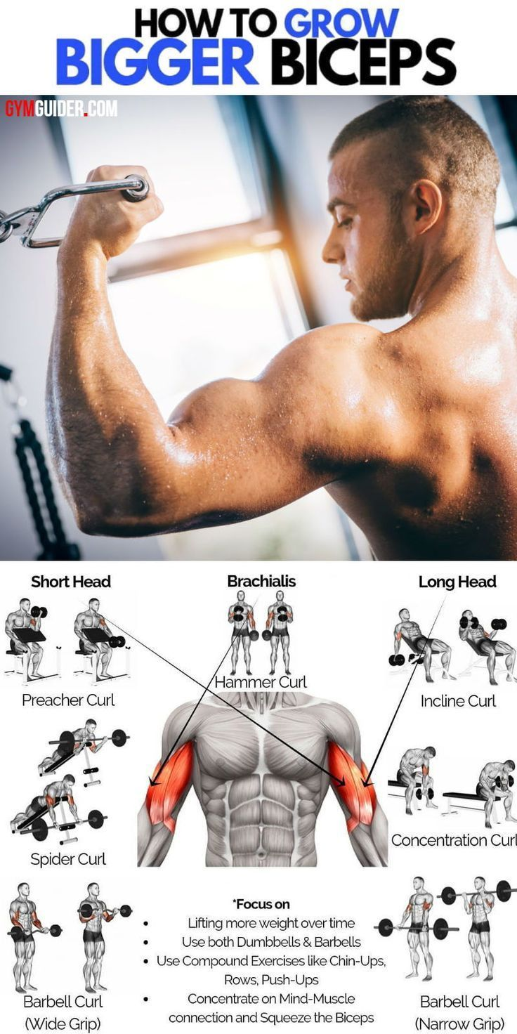 The Best Arms Pump Workout To Gain Impressive Width And Shape To Your Biceps And Triceps - GymGuider