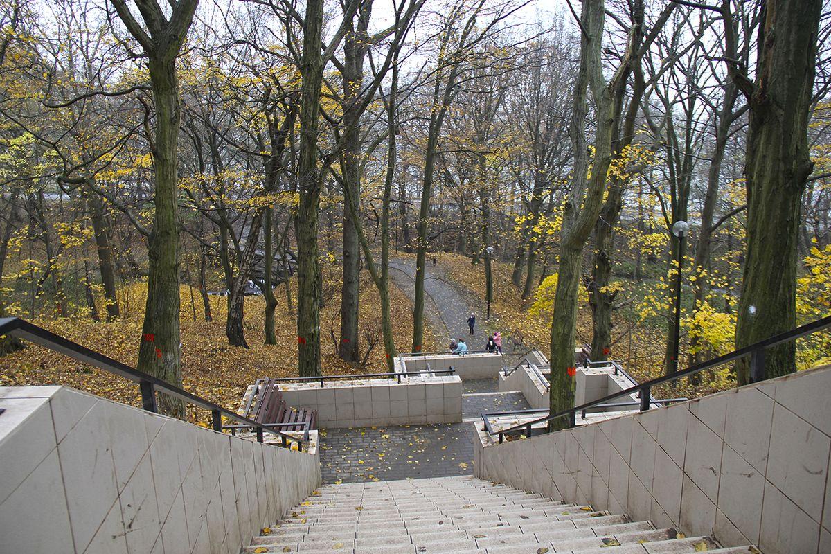 Спуск из парка в сторону Балтийского моря. Фото: Evgenia Shveda