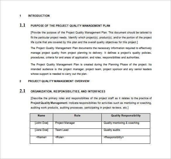 Project Plan Template Word Doc Sample Project Plan Template 3 - project plan example