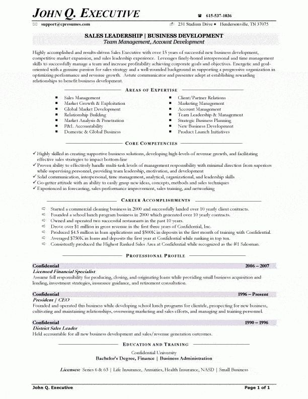 Sales Executive Resume Example - Examples of Resumes