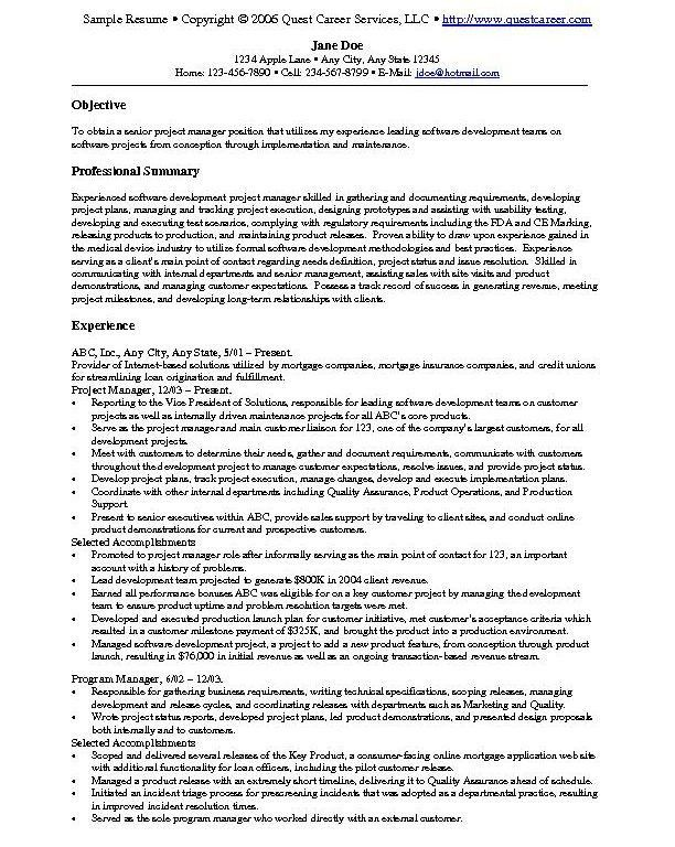 It Resume Examples Example It Security Careerperfectcom - cto resume examples