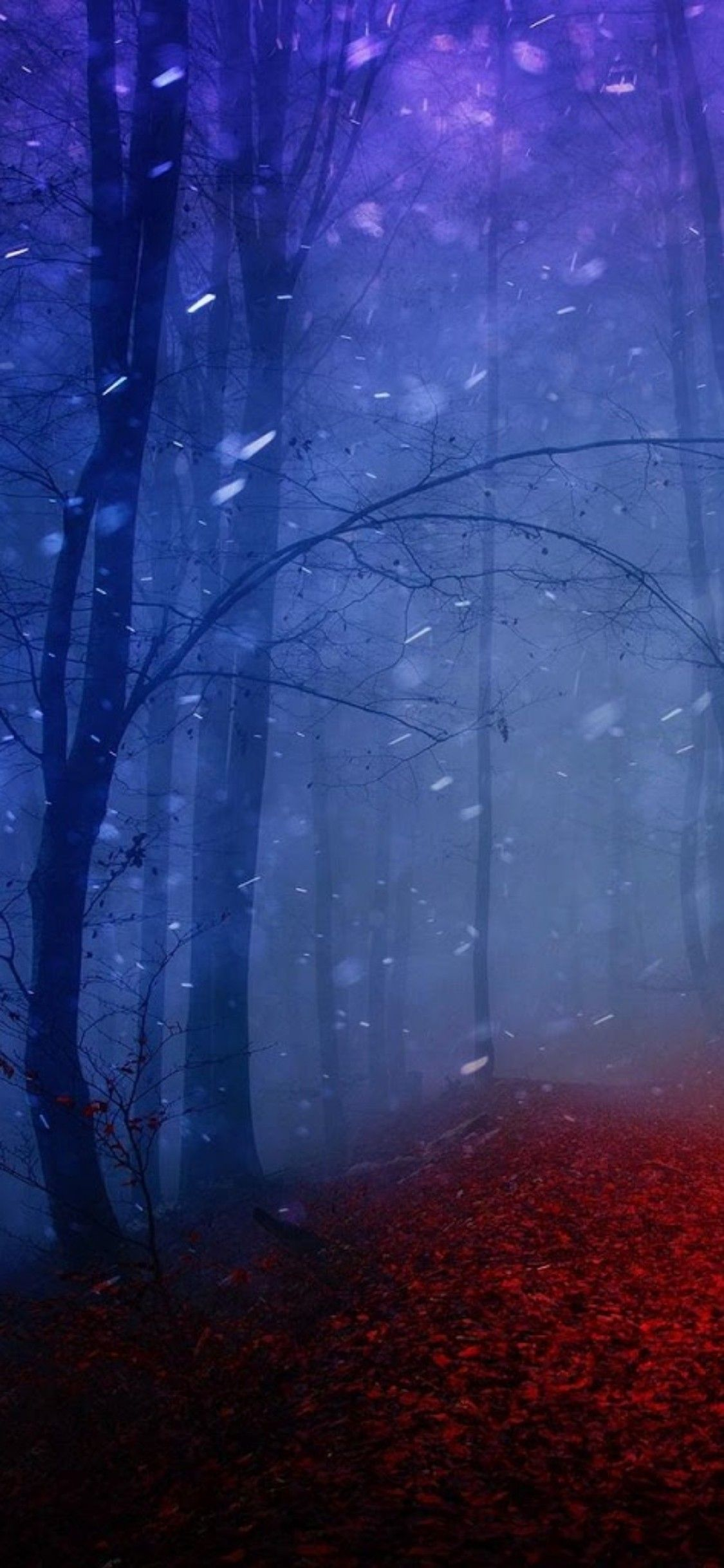 iOS 11, iPhone X, snow, night, red, trees, woods, nature