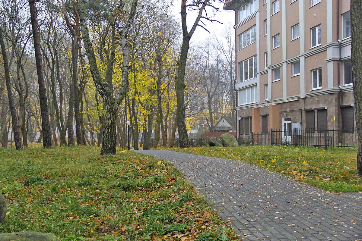 В парке Сосновый бор. Фото: Evgenia Shveda