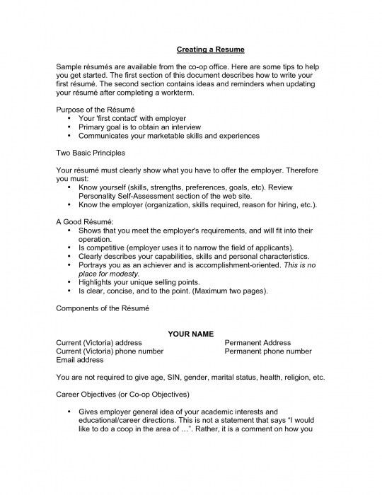 great objectives for a resumes