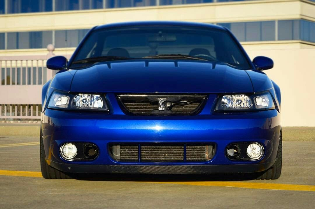 Terminator Cobra Mustang For Sale