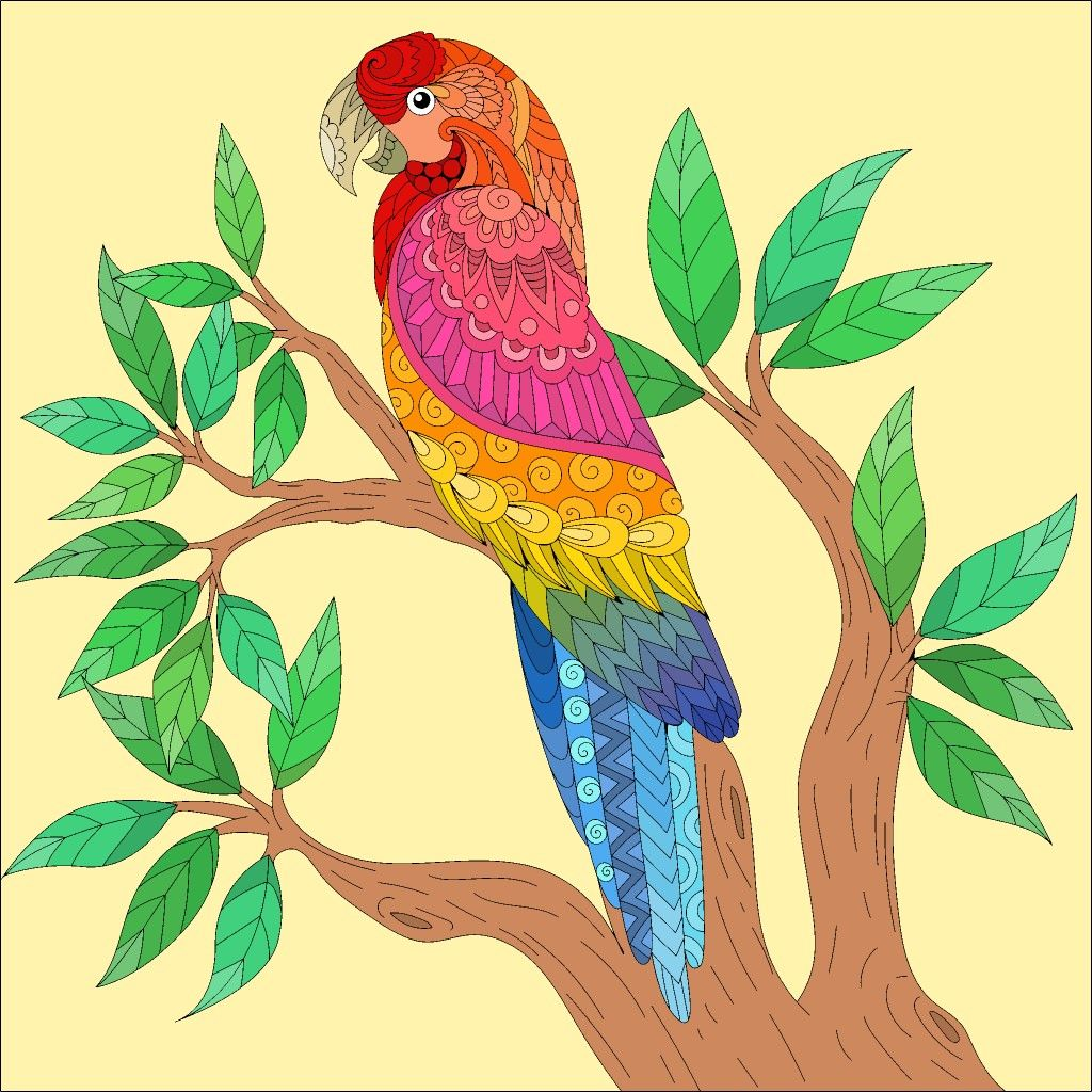 Coloring Pages Colored Real Parrot Yellow Bird