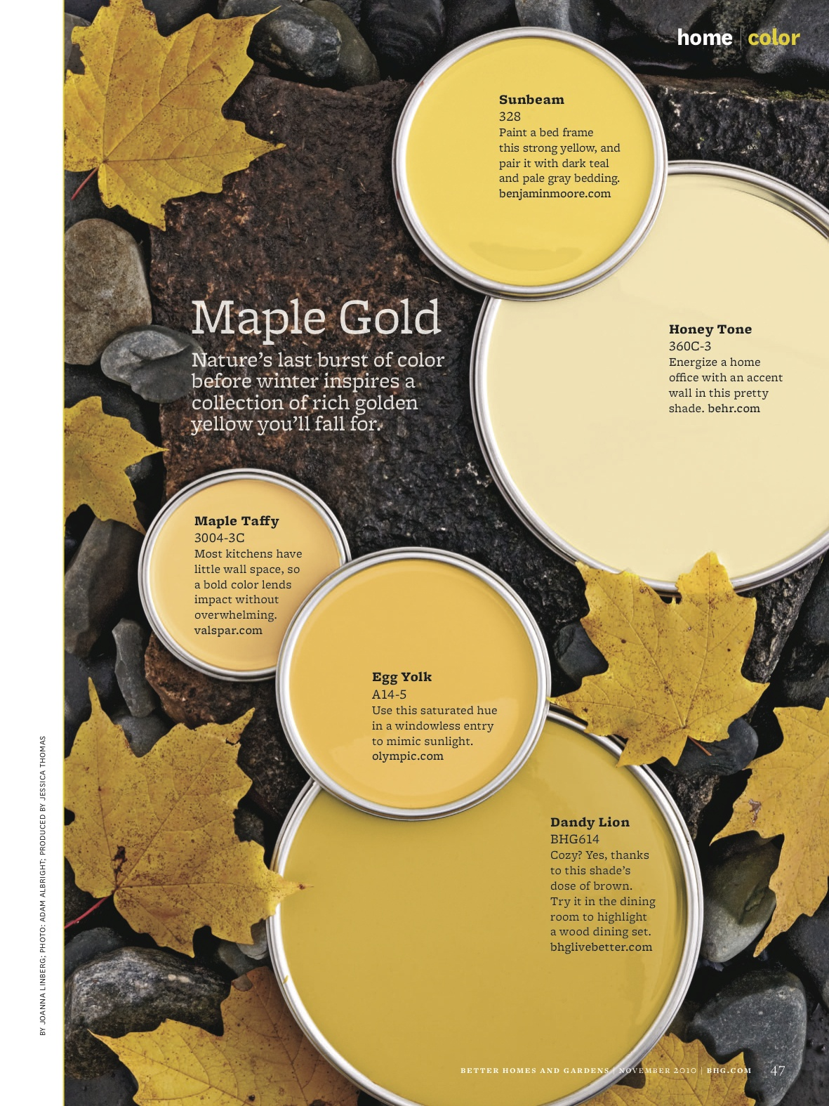 Maple Gold Paint Colors From Better Homes Gardens Sunbeam By Benjamin Moore Honey Tone Behr Taffy Valspar Egg Yolk Olympic Dandy Lion