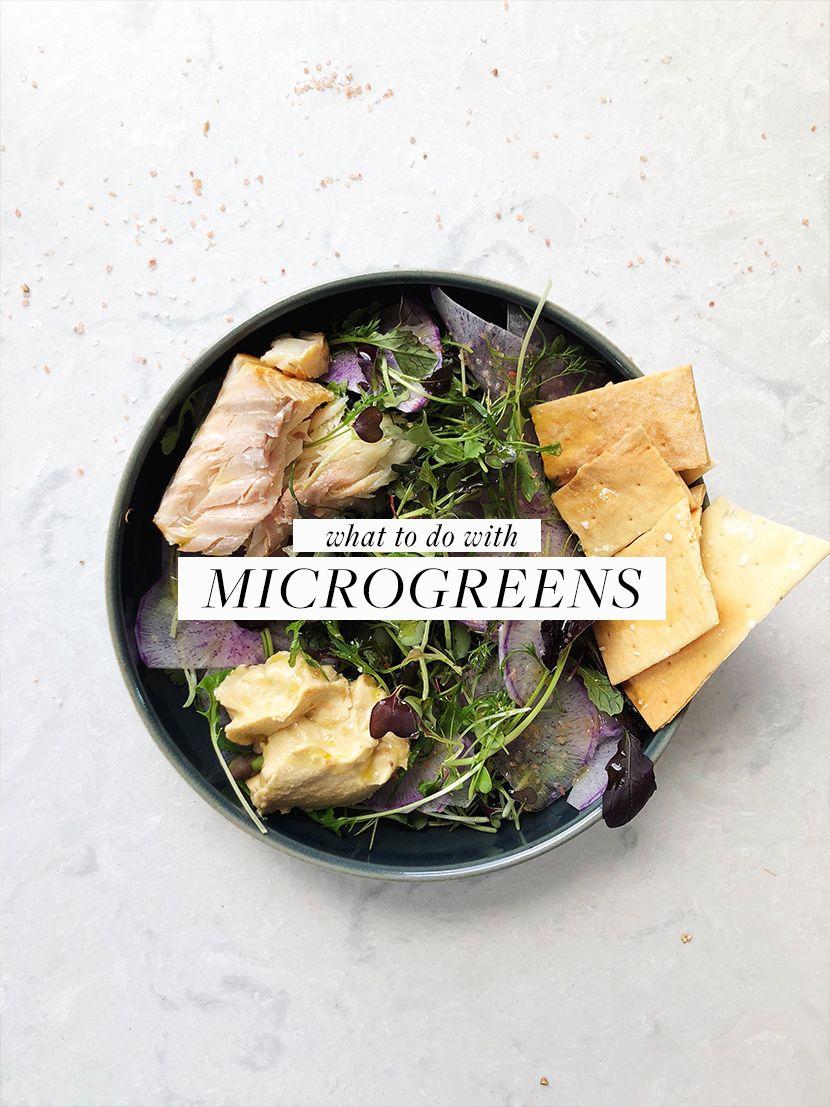 Seasonal Eating: What to do with Microgreens   Fresh Exchange