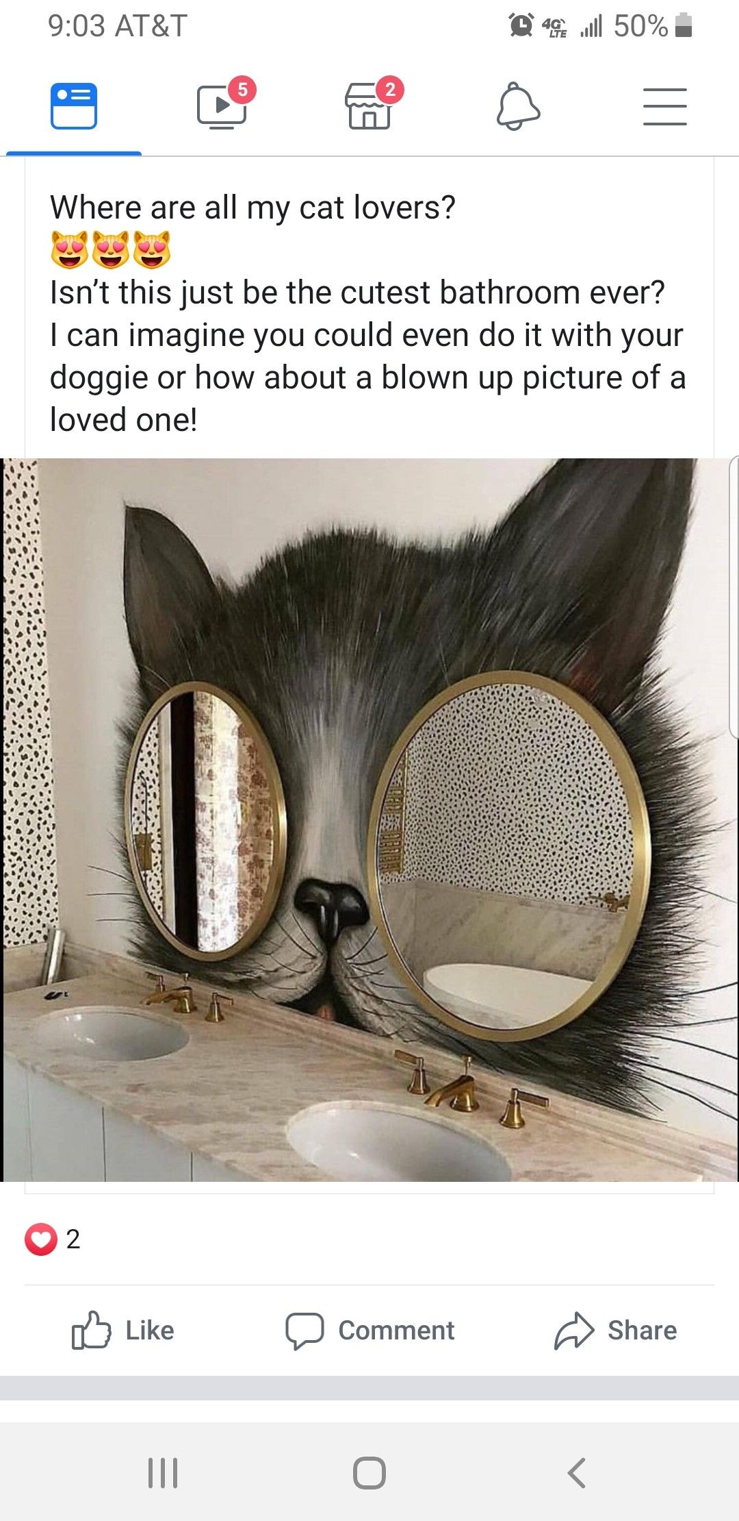 Pin by Samantha Dalton on Home Worthy Cute bat, Cat