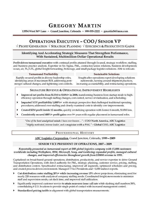 Operations Executive Resume Examples Examples Of Resumes
