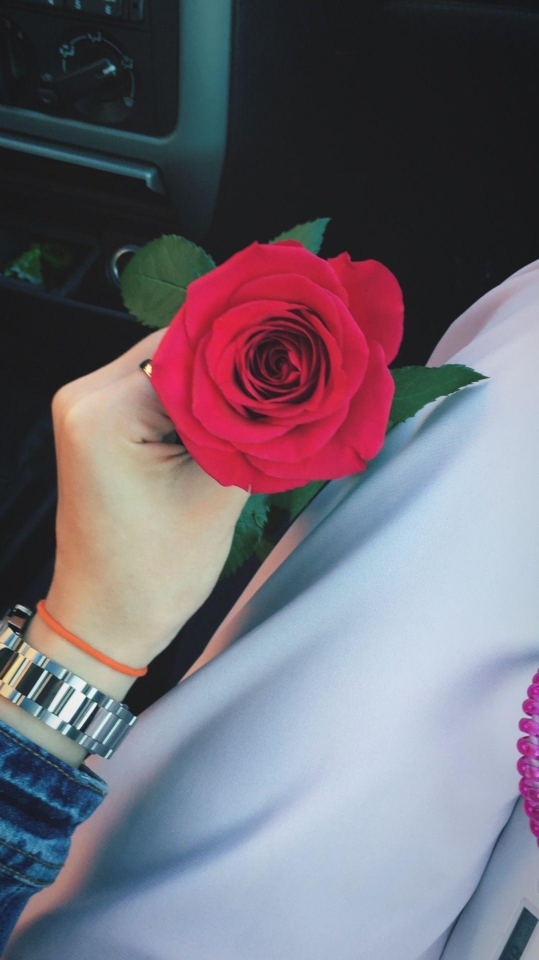 Flower Rose Marcos para fotos de boda, Imagen rosa